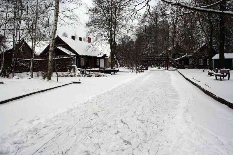 Winter in Lehde