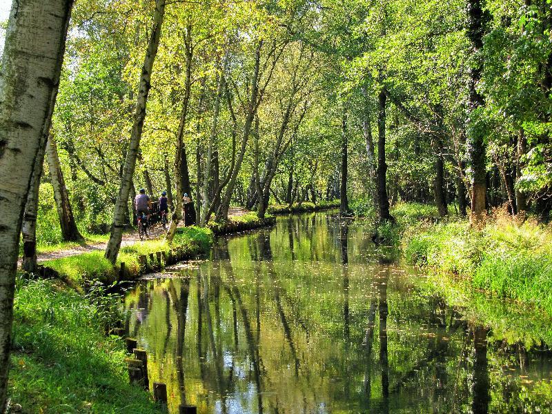 Aktive Erholung beim Radfahren im Spreewald