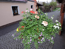 Ferienhaus Magolz
