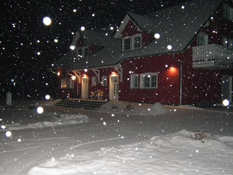 Winter im Spreeidyll